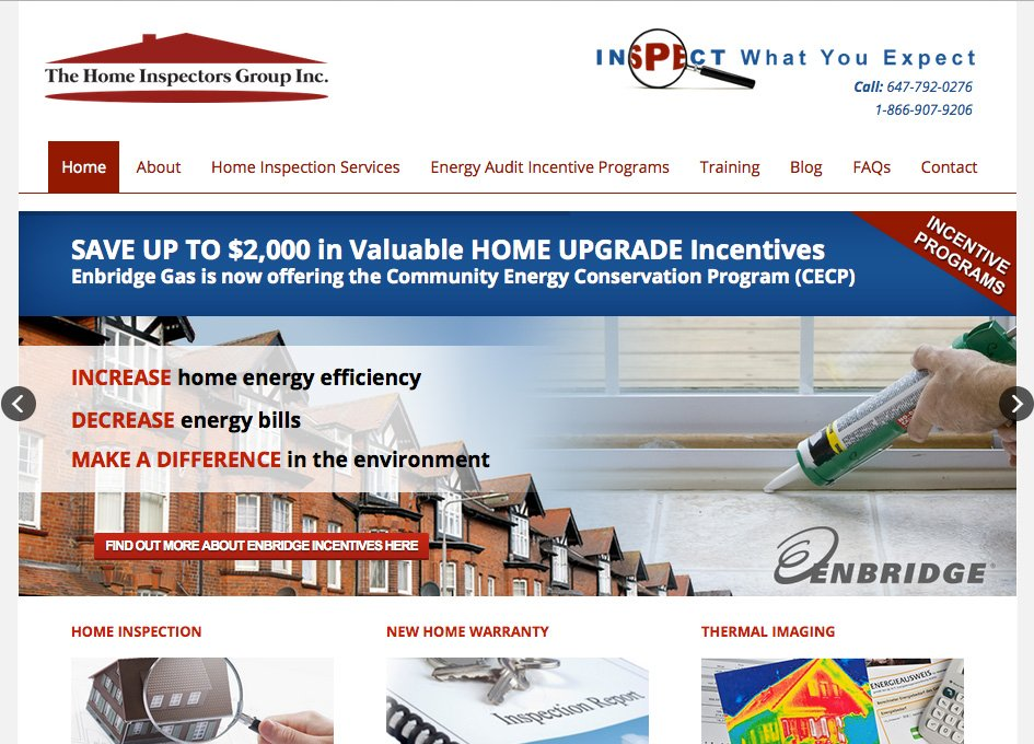 The Home Inspectors Group